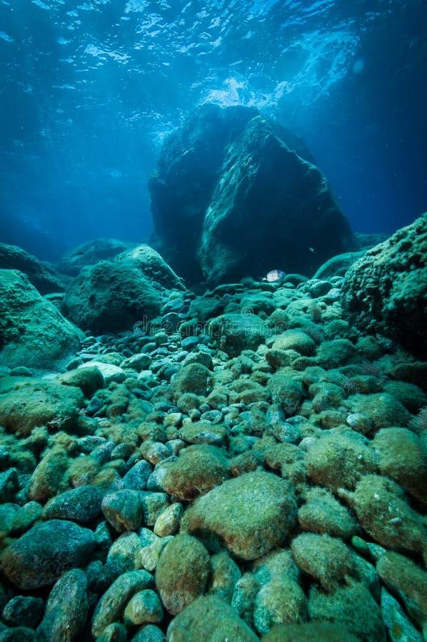 Parte inferior de mar rocosa imagen de archivo