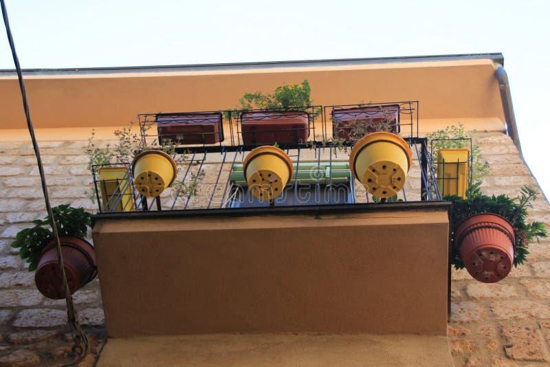 Parte inferior de muitas plantas em pasta no balcão no verão fotos de stock