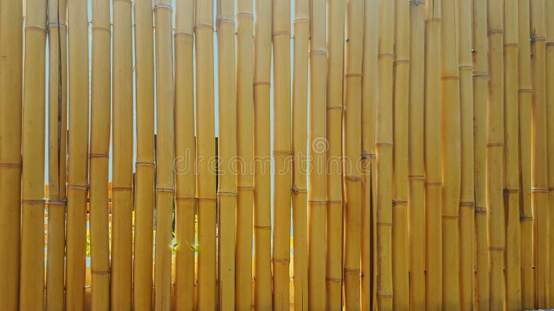 Parte la recinzione, fatta dei barilotti di bambù maturo fotografie stock