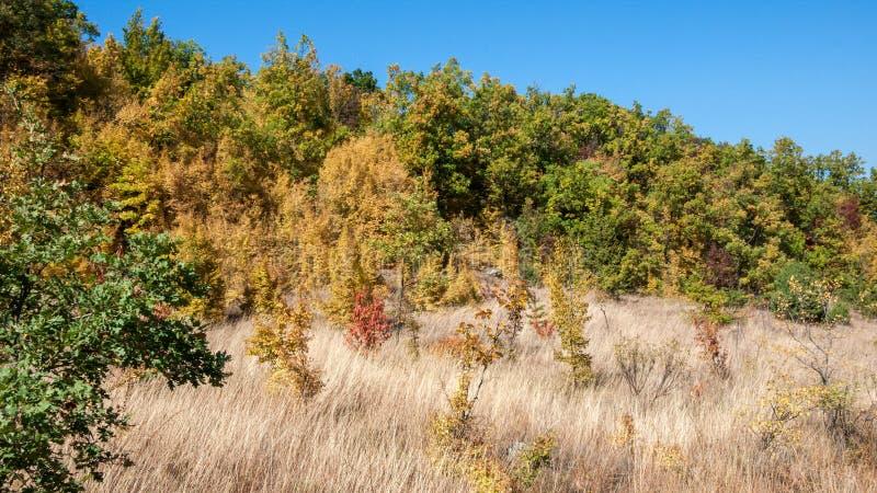 Parte norteña asombrosa de la montaña de Ruen del paisaje del otoño de la montaña de Vlahina, Bulgaria fotos de archivo