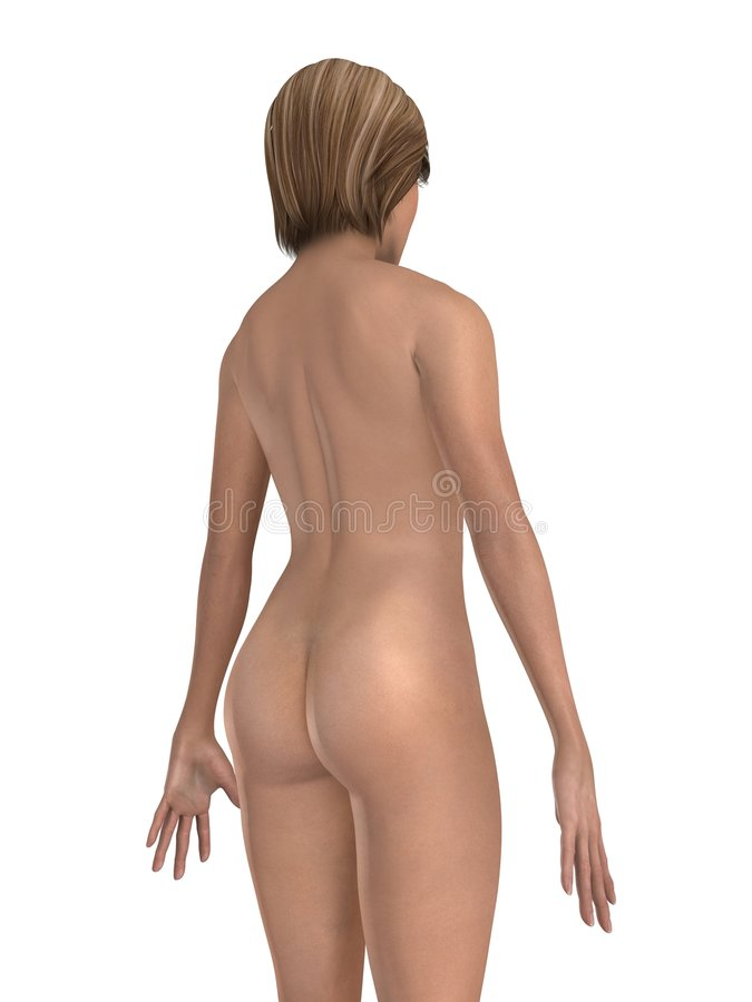 Parte posterior de la hembra libre illustration