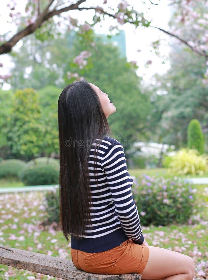 Parte posterior de la mujer asiática que se sienta en el banco de madera en el jardín al aire libre con la mirada para arriba imágenes de archivo libres de regalías