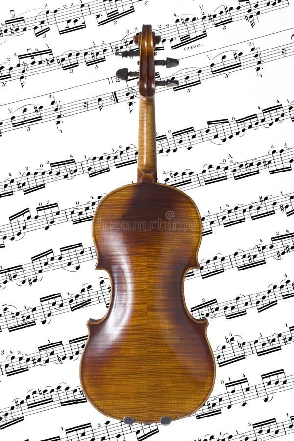 Parte posterior del violín foto de archivo libre de regalías