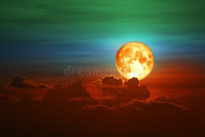 parte posteriore della luna del lupo sulla nuvola del mucchio della siluetta sul cielo di tramonto immagini stock