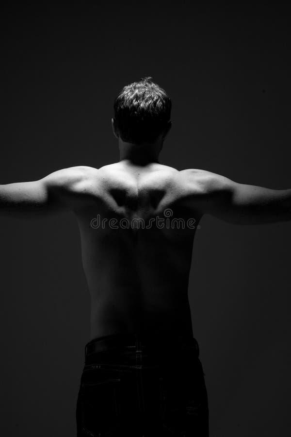 Parte posteriore muscolare immagine stock