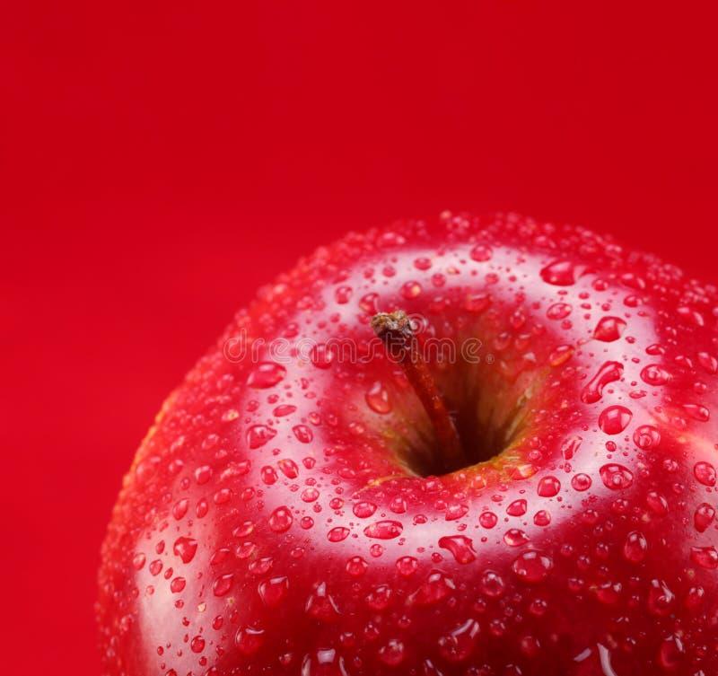 A parte superior da maçã vermelha foto de stock royalty free