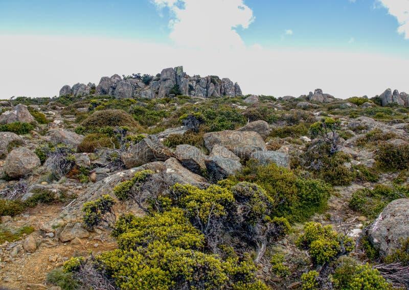A parte superior da montagem Wellington em Tasmânia Austrália fotos de stock