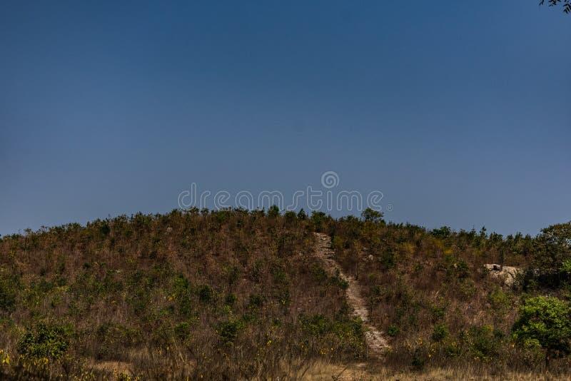 A parte superior da montanha é uma paisagem da rocha desencapada e os rockpools em uma floresta e em uma ela rurais fornecem idei foto de stock