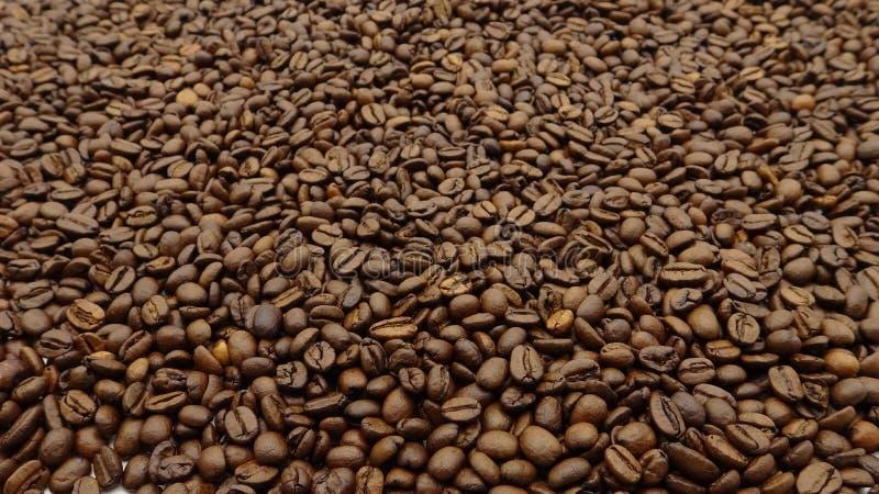 Parte superior da opinião feijões de café roasted imagem de stock royalty free