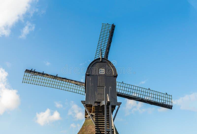 Parte superior de um moinho oco de madeira velho do cargo do fim imagem de stock royalty free