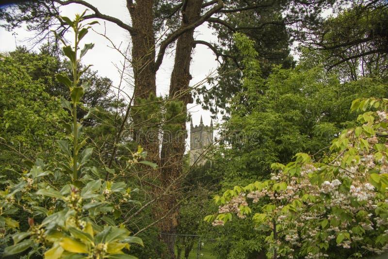 Parte superior do castelo através das árvores imagens de stock