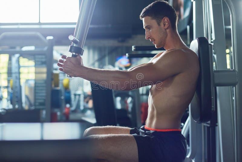 Parte superior do corpo do treinamento no Gym imagens de stock