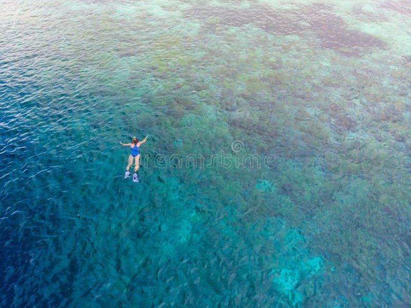 Parte superior a?rea abaixo dos povos que mergulham no mar das cara?bas tropical do recife de corais, ?gua azul de turquesa Arqui imagens de stock