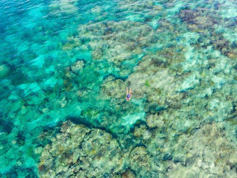 Parte superior a?rea abaixo dos povos que mergulham no mar das cara?bas tropical do recife de corais, ?gua azul de turquesa Arqui fotografia de stock royalty free