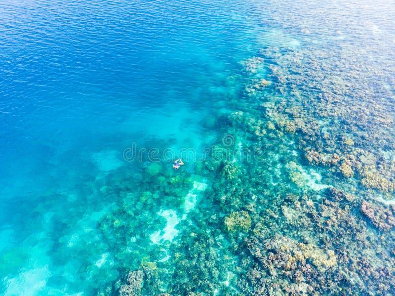 Parte superior a?rea abaixo dos povos que mergulham no mar das cara?bas tropical do recife de corais, ?gua azul de turquesa Ilhas imagens de stock royalty free