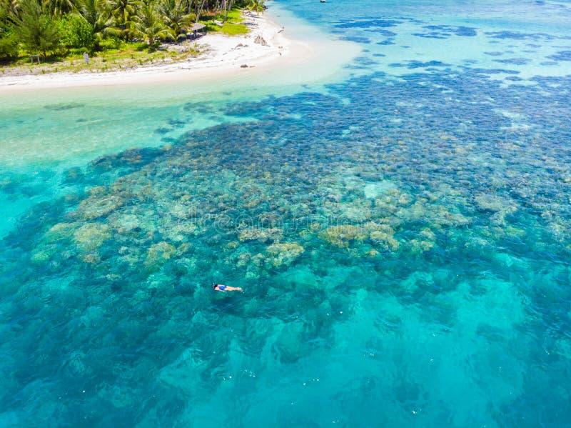 Parte superior a?rea abaixo dos povos que mergulham no mar das cara?bas tropical do recife de corais, ?gua azul de turquesa Ilhas imagens de stock