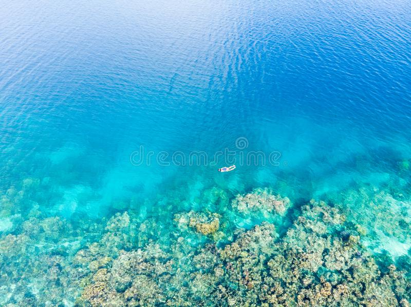 Parte superior a?rea abaixo dos povos que mergulham no mar das cara?bas tropical do recife de corais, ?gua azul de turquesa Ilhas foto de stock