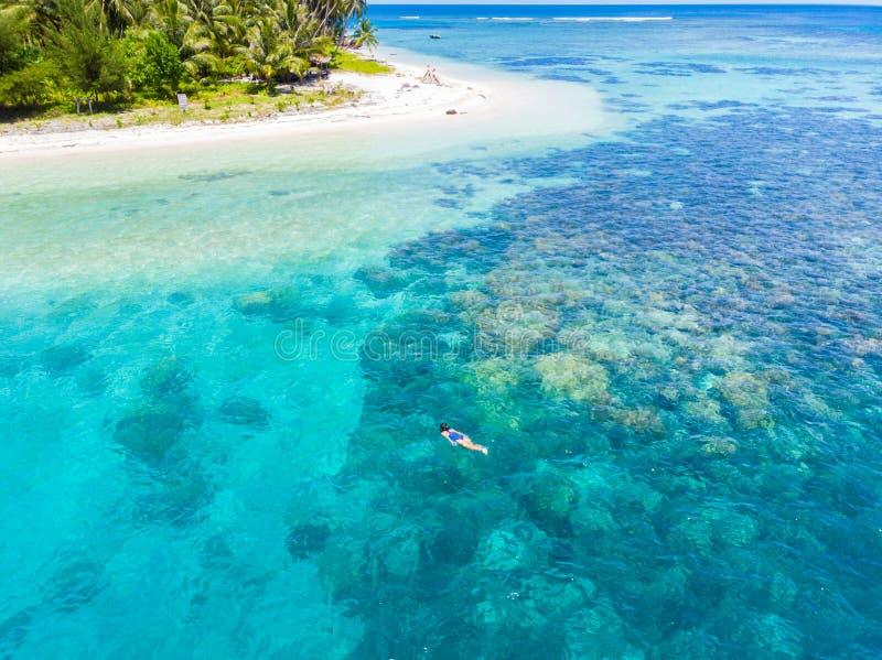 Parte superior a?rea abaixo dos povos que mergulham no mar das cara?bas tropical do recife de corais, ?gua azul de turquesa Ilhas fotografia de stock