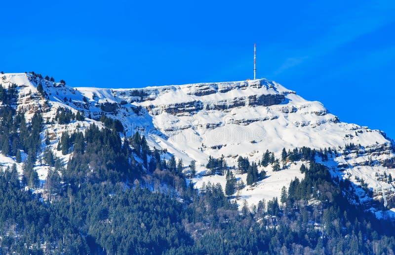 Parte superiore del Mt Rigi in Svizzera nell'inverno fotografia stock libera da diritti