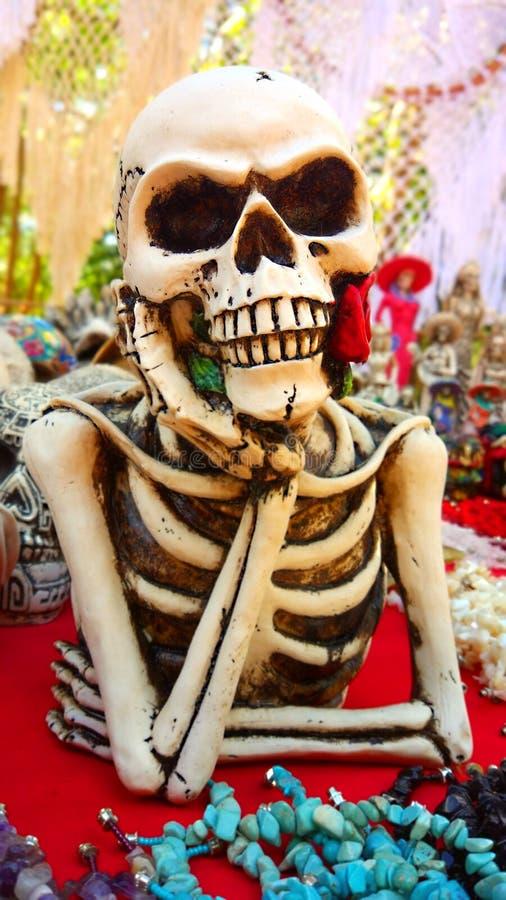 Parte superiore di scheletro sorridente fotografia stock