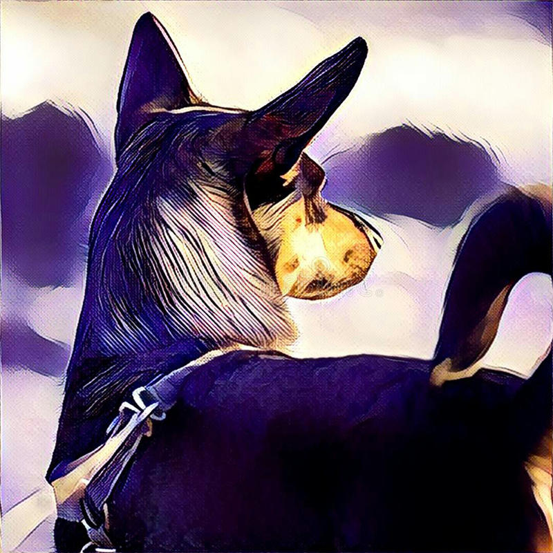 Parte traseira do cão preto ilustração stock