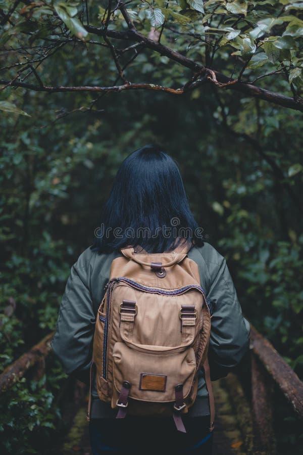Parte traseira do mochileiro asiático da mulher em forestwalking na ponte na fuga natural na floresta tropical em férias do feria fotografia de stock