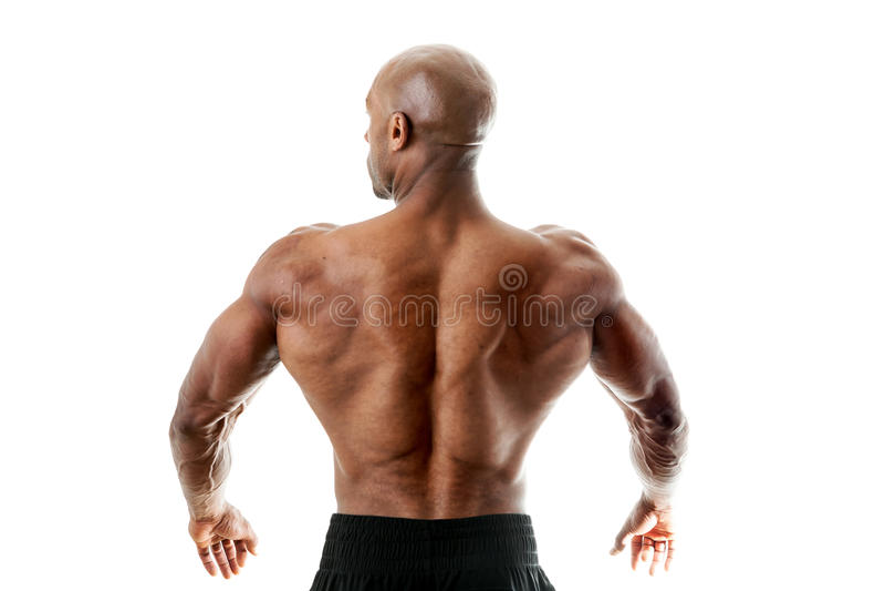 Parte traseira muscular foto de stock
