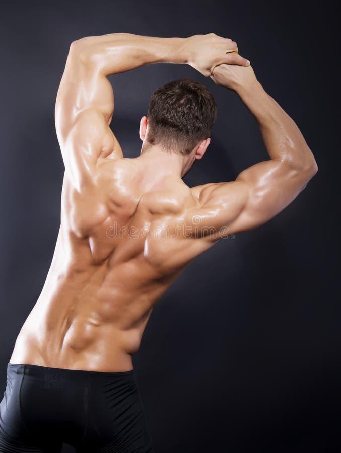 Parte traseira muscular do homem no fundo preto fotos de stock royalty free