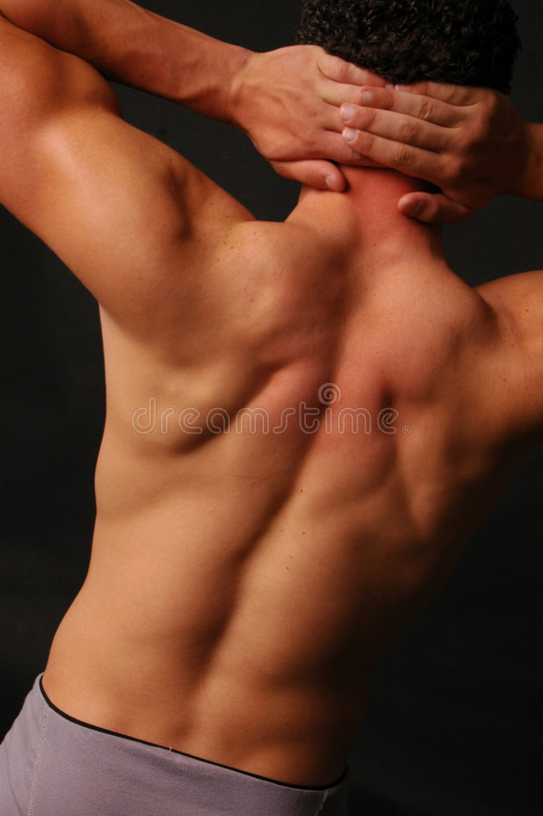 Parte traseira muscular do macho fotografia de stock