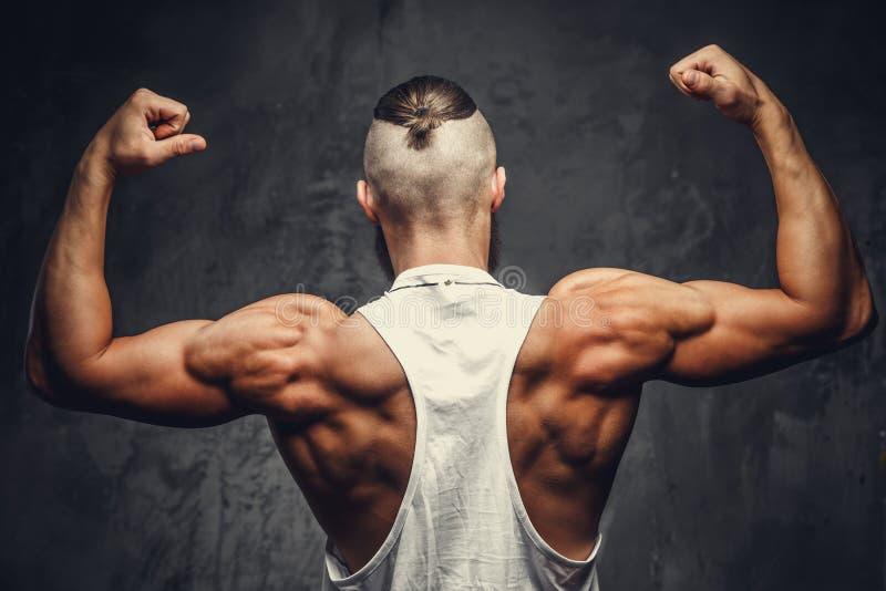 Parte traseira muscular do ` s do homem fotografia de stock royalty free