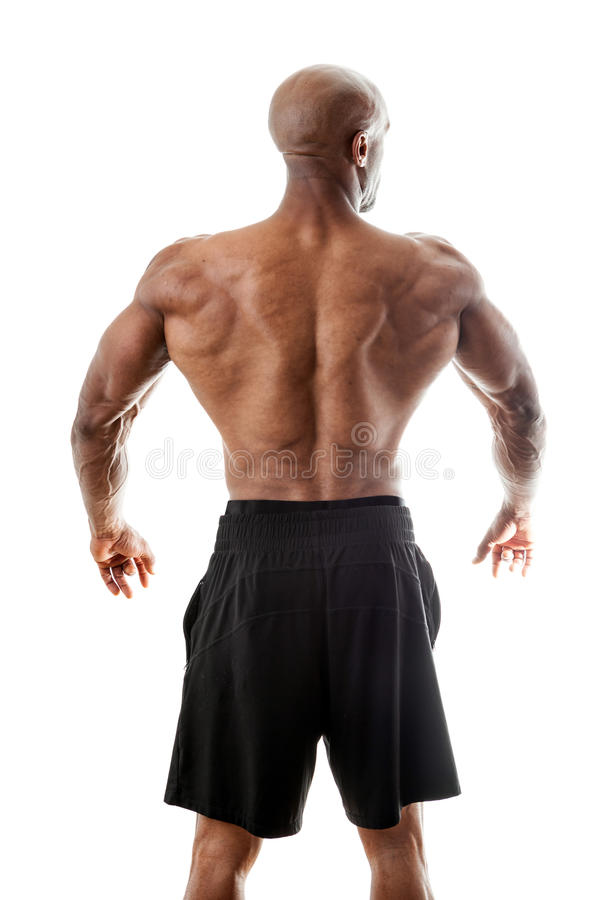 Parte traseira muscular forte imagem de stock