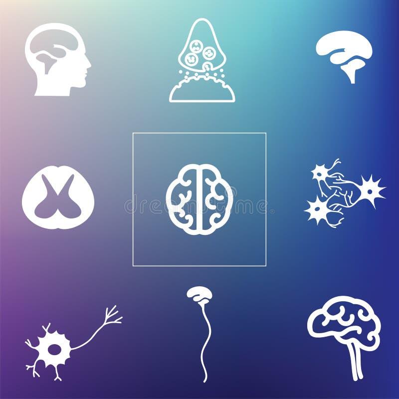 Parte traseira neural do cérebro ilustração stock