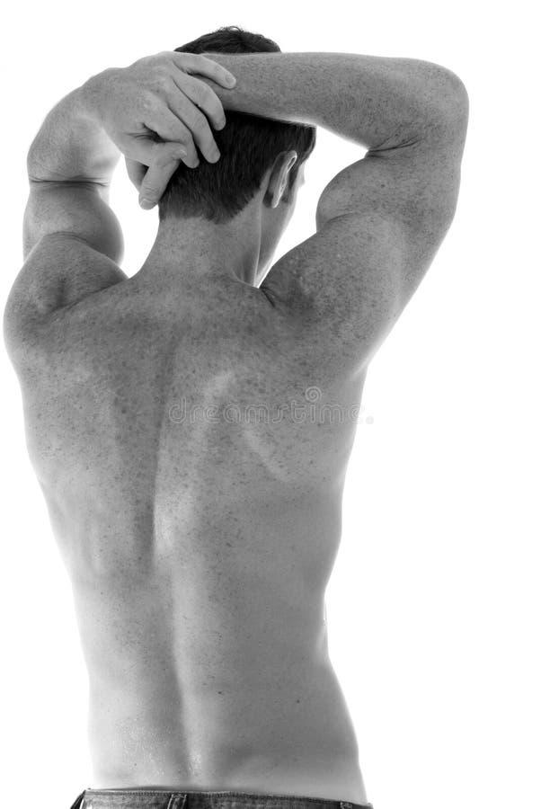 Parte traseira 'sexy'. imagens de stock