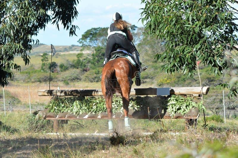 Parte trasera de un equestrian de Eventing imágenes de archivo libres de regalías