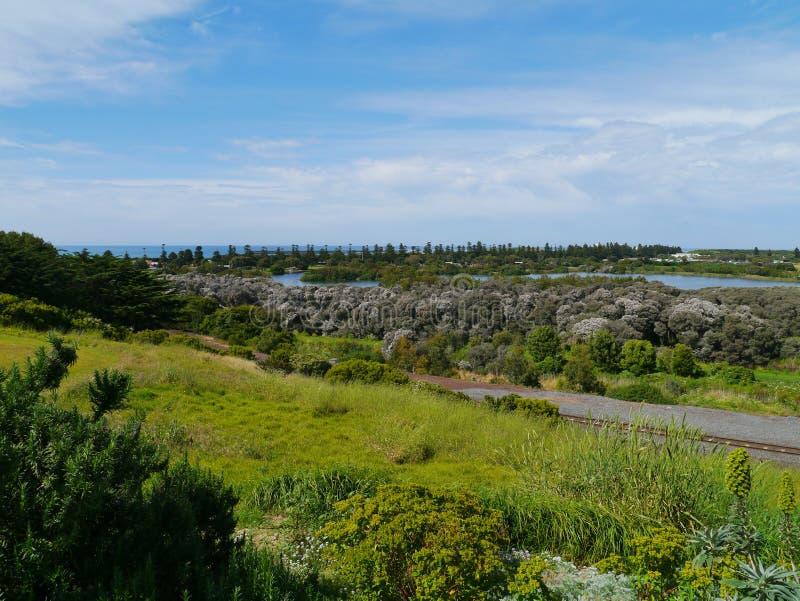 A parte verde da baía das ilhas fotos de stock