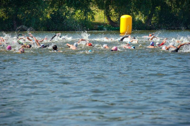 Partecipanti di triathlon alla parte di nuotata di corsa fotografia stock libera da diritti