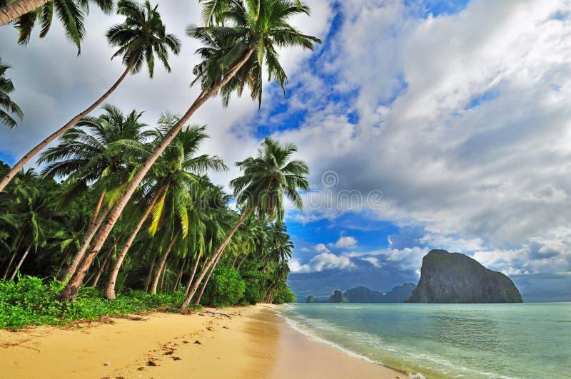 Partenza tropicale del mare fotografia stock