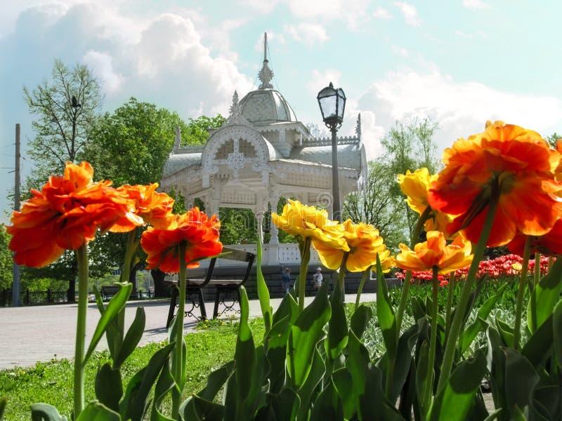 Parterre avec de doubles tulipes rouge-jaunes de Terry contre Altanka en parc sur la place de Pokrovsky à Soumi photos stock
