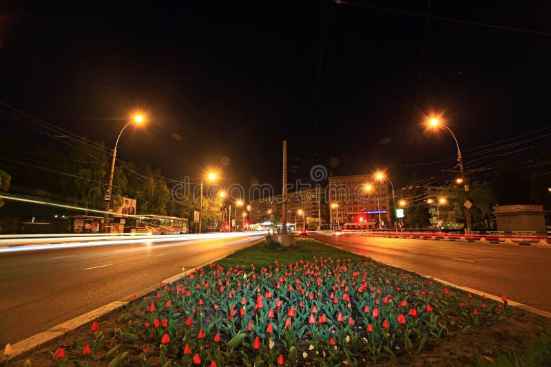 Parterre avec des tulipes image libre de droits