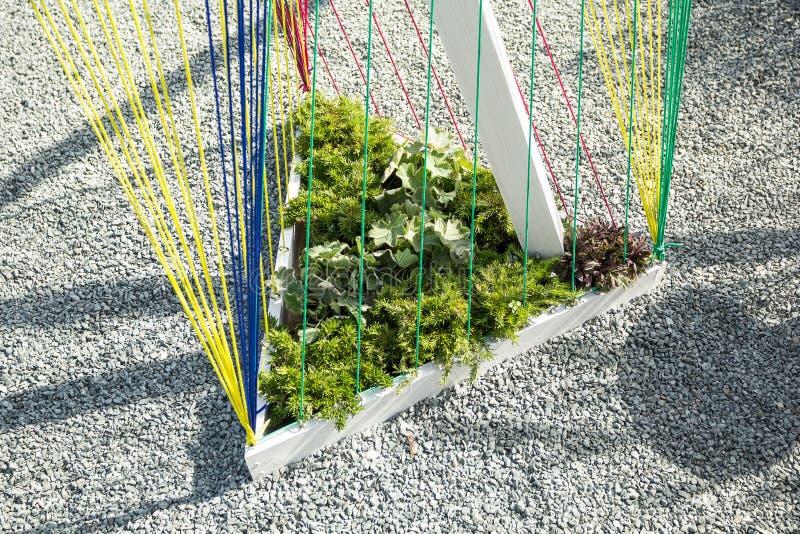 Parterre triangulaire avec des cordes pour des usines près de la voie de gravier, du minimalisme et de la conception moderne photo libre de droits