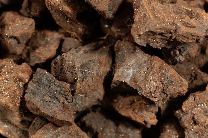 Partes de lignite ou de carvão marrom fotografia de stock royalty free
