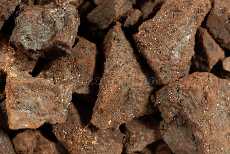 Partes de lignite ou de carvão marrom imagens de stock