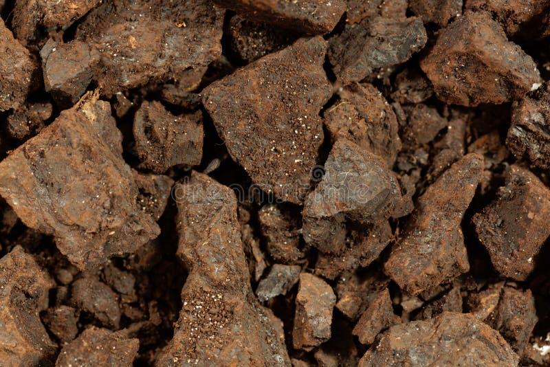 Partes de lignite ou de carvão marrom imagem de stock