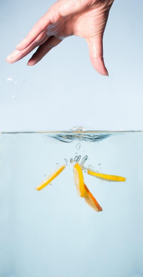 Partes de limão e de laranja frescos na água foto de stock royalty free