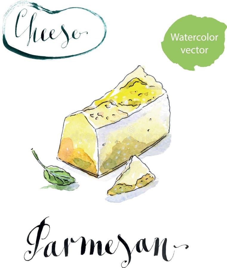 Partes de queijo parmesão orgânico gourmet delicioso com manjericão ilustração royalty free