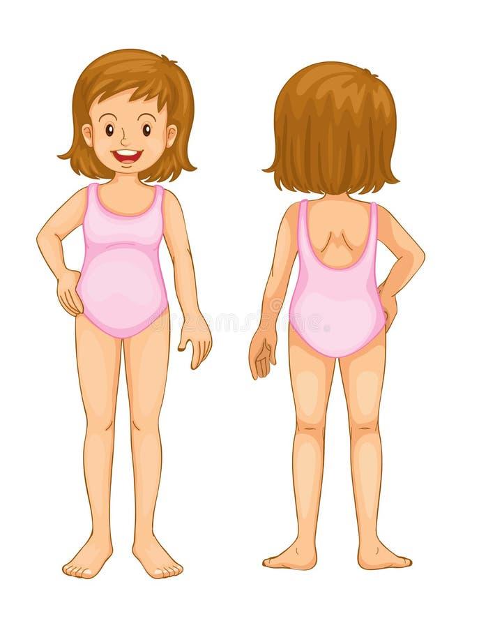 Partes do corpo da rapariga ilustração royalty free