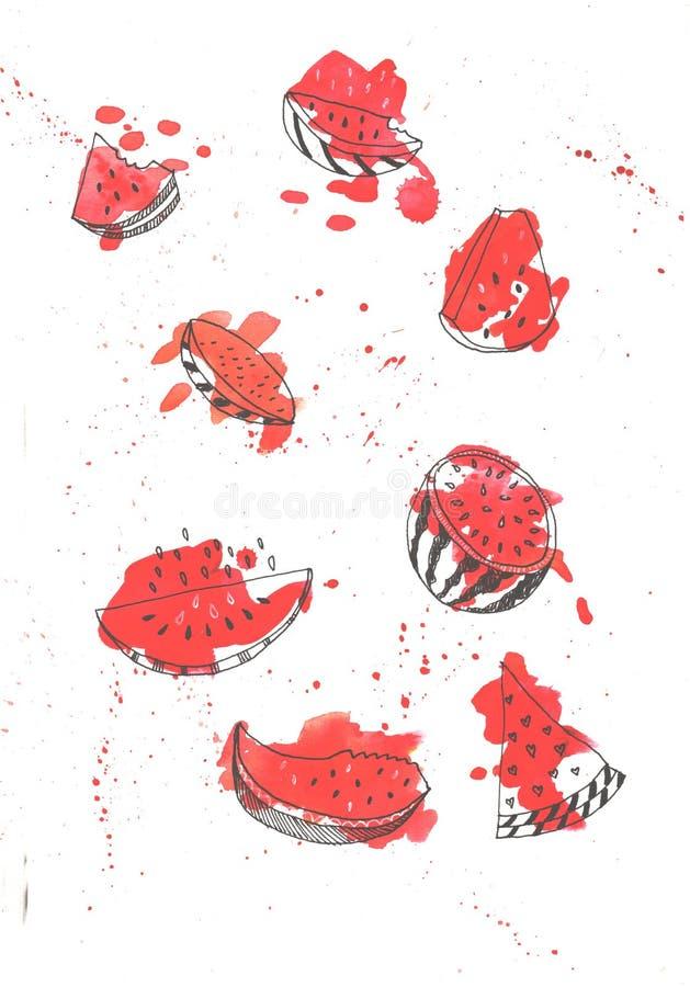 Partes isoladas coloridas da melancia da aquarela em cores vermelhas brilhantes Frutos ex?ticos pintados ? m?o Grupo fresco do ve ilustração royalty free