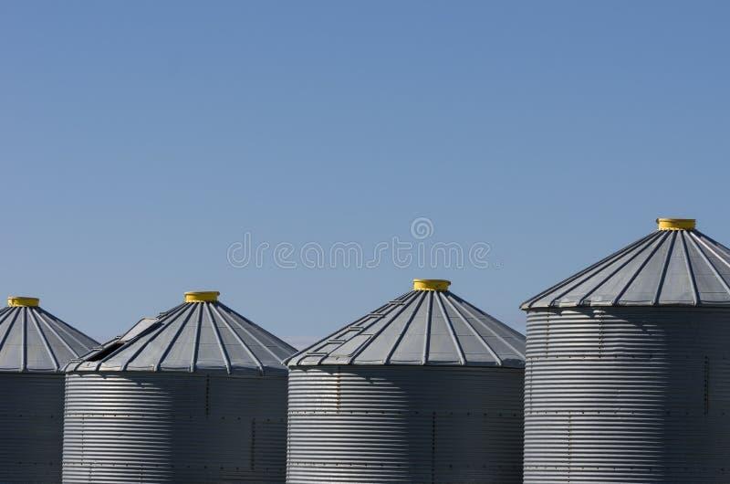 Partes superiores amarelas nos escaninhos de aço da grão em um dia ensolarado foto de stock