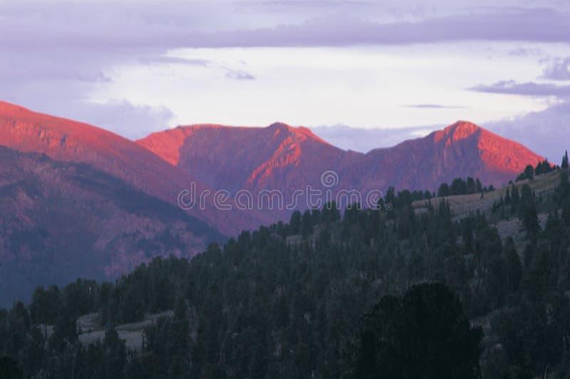 Partes superiores da montanha na noite foto de stock