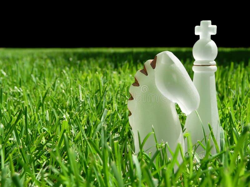 Parti di scacchi in erba immagini stock